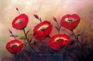 "Poppy Profusion 20 x 30"" Oil on canvas"