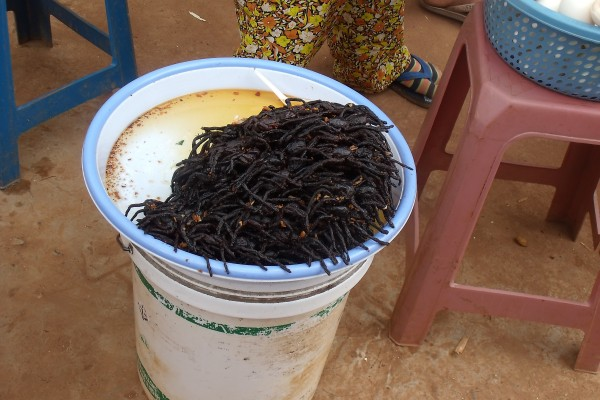 Spiders to eat in a Cambodian Market