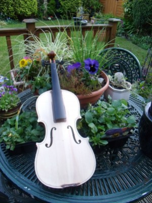 Artistic Journey of the Violin 1, instrument art, fund-raising event, musical art,