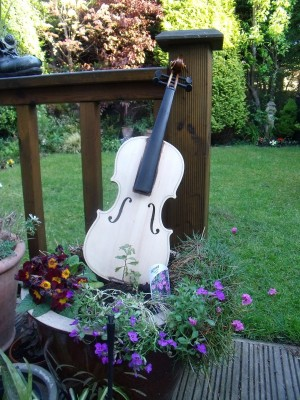 Artistic Journey of the Violin 2,My Garden Violin, Instrument Art