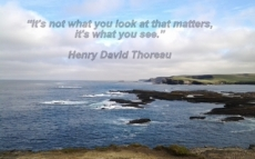 "Inspirational  art quote 1.	""It's not what you look at that matters, it's what you see."" Henry David Thoreau"