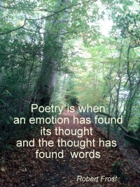 Poetry is when an emotion has found its thought and the thought has found words