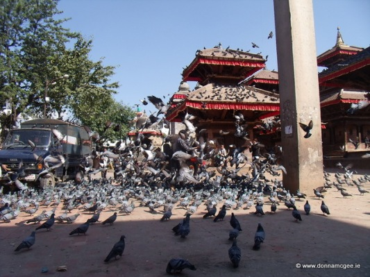 Taleju Temple - feeding the pigeons